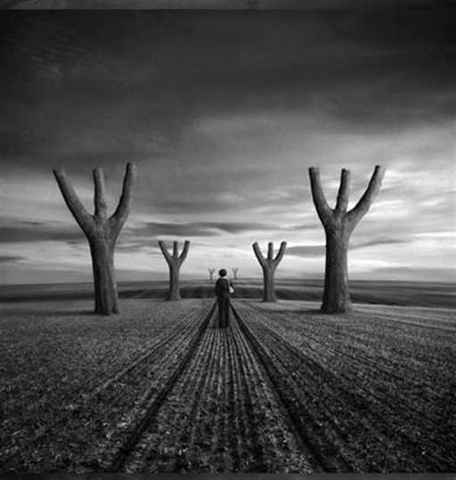 """Valley of the Blind"" de Dariusz Klimczak"
